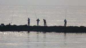 Fishing from shore
