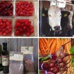 Berries-Cows-Hazelnuts-Vegetables