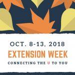 Fall leaves - Extension Week