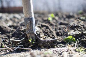 shovel in garden soil