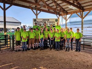 2019 4-H Market Sale youth at the Bayfield County Fair