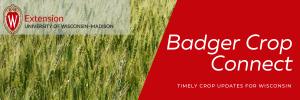 Badger Crop Connect