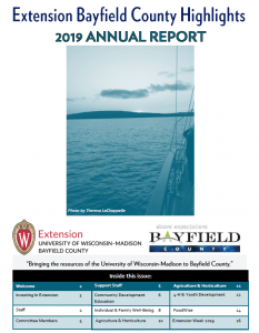 2019 Highlights Annual Report Cover