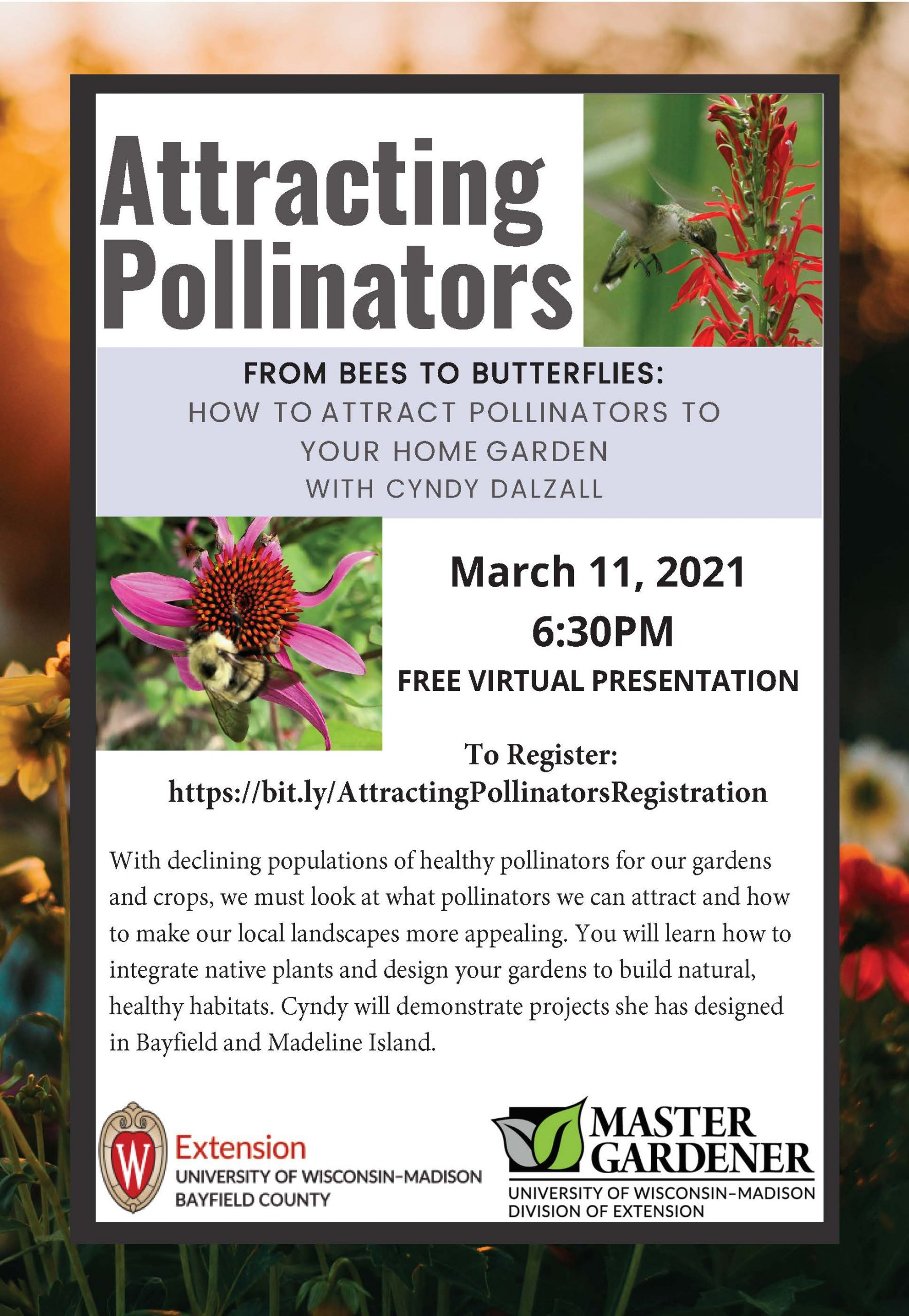 Attracting Pollinators with Cyndy Dalzall
