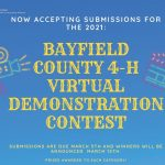 Virtual Demonstration Contest
