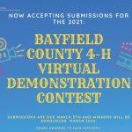 Virtual Demonstration Contest