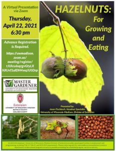 Hazelnuts: for Growing & Eating-April 22, 2021 via Zoom